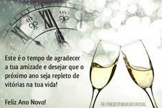 Este é o tempo de agradecer a tua amizade e desejar que o próximo ano seja repleto de vitórias na tua vida! Feliz Ano Novo! (Frases para Face)
