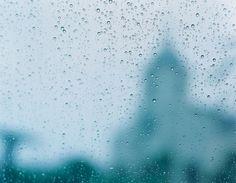 川内倫子『The rain of blessing』