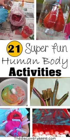 21 Super Fun Human Body Activities and Experiments for Kids - The Discovery Appl. - 21 Super Fun Human Body Activities and Experiments for Kids – The Discovery Appl… 21 Super Fu - The Human Body, Human Body Lesson, Human Body Science, Human Body Activities, Health Activities, Preschool Science, Science Education, Science For Kids, Stem Activities