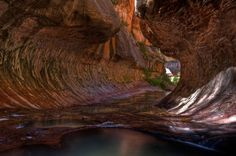 The Subway Pools in Zion National Park. Photo by terratrekking. Zion National Park, National Parks, Zion Park, Places To See, Places To Travel, Wonderful Places, Beautiful Places, Beautiful Sites, Beautiful People