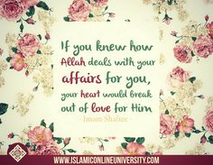 """""""If you knew how Allah deals with your affairs for you, your heart would melt out of love for him."""" Imam Shafiee"""