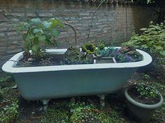 vasca di ghisa trasformata in contenitore per piante