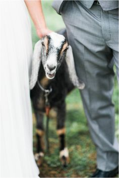 Kim Stockwell Photography Jillian & Michael Khimaira Farms Luray Va Mountain Wedding 2015_0201