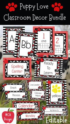 My Puppy Love Editable Classroom Décor Bundle features all you need to have a fresh new look for your classroom this fall! Check out the preview for a quick look at this colorful theme. My Puppy Love Classroom Décor Bundle features my ENTIRE Puppy Love collection including several editable features! #teacherspayteachers #tpt #classroommanagement #backtoschool Classroom Décor, Classroom Organization, Classroom Management, Back To School, Public School, Teacher Resources, Teaching Kids, Elementary Schools, Puppy Love