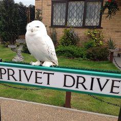 Warner Bros. Studio Tour London - The Making Of Harry Potter in Leavesden Green, Hertfordshire
