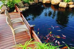 Koi ponds are a type of water garden that house koi fish. Here are some tips to caring koi ponds. Koi Pond Kits, Koi Fish Pond, Fish Ponds, Backyard Water Feature, Ponds Backyard, Garden Ponds, Pond Landscaping, Landscaping With Rocks, Garden Pond Design