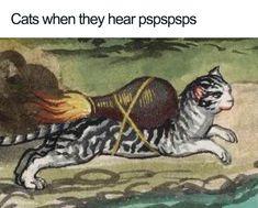 Classical Art Memes, Memes Humor, Funny Memes, Stupid Memes, Animal Memes, Funny Animals, Medieval Memes, Art History Memes, History Timeline
