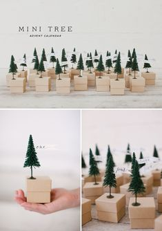 will be making this next year  mini tree advent calendar  // make your own. Order boxes in ring bulk and a bag of train set trees - or lego trees for kids, ad hot glue then fill them up! SO CUTE! Maybe use baby food jars? Use around the houses? Put numbers on the box or jar?