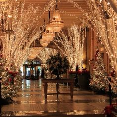"Discovered by Brian Roslund: ""Christmas time at the historic Roosevelt Hotel. The decorations in the city-block-long lobby have been a New Orleans tradition for decades."" The Roosevelt New Orleans, a Waldorf Astoria Hotel in New Orleans, LA"
