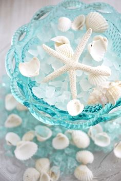 Single Larger white starfish, white seaglass and delicate white shells set against aqua patterned glass bowl.