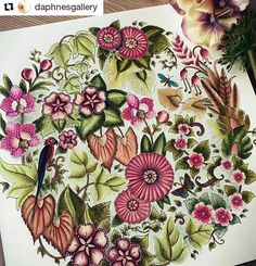 Mandala Incrivel With Johanna Basfords New Book Magical Jungle Was Being Sent Me By Staedtler