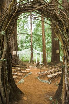 Set in a redwood grove, this nature inspired wedding includes pink peonies, al fresco dining under a canopy of trees and a stunning lace Claire Pettibone gown worn by the Bride.