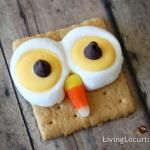 Owl Smores | Living Locurto - Free Printables, How To DIY Ideas, Crafts & Party Ideas.