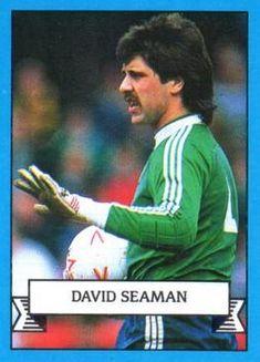 Queens Park Rangers Fc, David Seaman, Trading Card Database, Goalkeeper, Merlin, 1990s, Football, Goaltender, Soccer