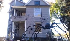 #Halloween spiders. Found on: http://www.halloweenforum.com/tutorials-and-step-by-step/80638-giant-spider-pvc-legs-11.html