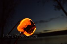 A good old fashion burning marshmallow. Kyler L Photography.
