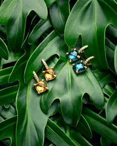 Lush color: style your resort looks with vivid earrings crafted with citrine and Hampton blue topaz, and pavéd with diamonds. Jewelry Ads, Jewelry Model, Photo Jewelry, Jewelry Trends, Jewellery, Jewelry Photography, Fashion Photography, Product Photography, Photography Ideas