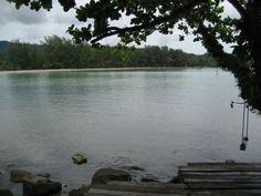 A tree swing hangs over the water sooooo relaxing