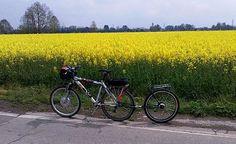 Un confronto tra 8 tipi di rimorchi e carrellini per la bicicletta, spiegati bene e con molte immagini.