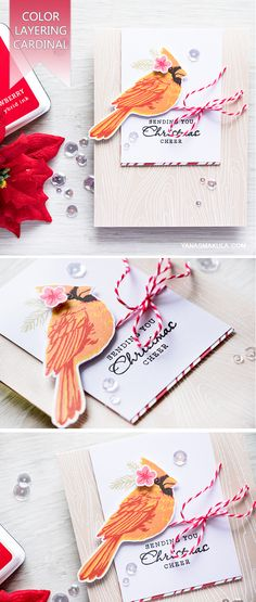 Stamp beautiful realistic Cardinal to use on a Christmas card using Hero Arts Color Layering Cardinal stamp set from the Holiday 2016 Catalog. For details visit  http://www.yanasmakula.com/?p=55101