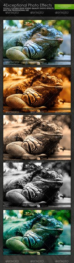Buy Exceptional Photo Effects by graphcoder on GraphicRiver. totally effective and useful effect pack. very handy and useful. every photographer should have one copy… the instru. Photography Tools, Photoshop Photography, Travel Photography, Effects Photoshop, Photoshop Actions, Lightroom, Film Effect, Light Leak, Photoshop Photos