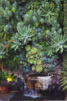 Vertical Garden Wall - A living wall, or vertical garden, is an assortment of wall-mounted plants. Vertical wall gardens would be the current trend in home design and will be the ideal means to bring a little bit of the outdoors in. Vertical Succulent Gardens, Vertical Garden Wall, Succulent Wall, Cacti And Succulents, Planting Succulents, Vertical Planting, Succulent Ideas, Vertical Farming, Succulent Containers