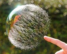 Write a story from the perpective of the short lifespan of a bubble - creative writing prompts for kids