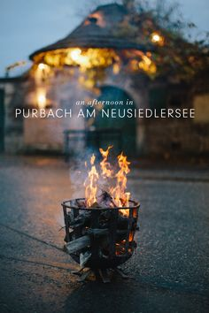 Spend an afternoon in the charming little village of Purbach am Neusiedlersee, Austria. Travel Around The World, Around The Worlds, Opening Ceremony, You Are Awesome, Wine Tasting, Austria, Adventure Travel, Winter, Snow Ice Cream