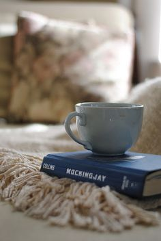 hot cocoa, cozy blanket. #reading, #books Who would do that to a book, please tell me the cup is empty! O__O