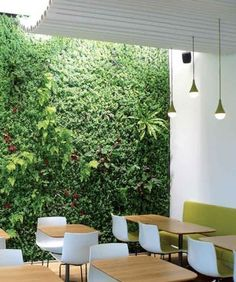 1000 images about jardines verticales on pinterest wall for Jardines verticales alicante