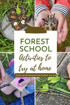 Forest school activities to try at home