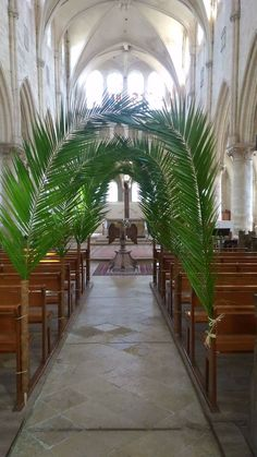 Palm Sunday inspiration