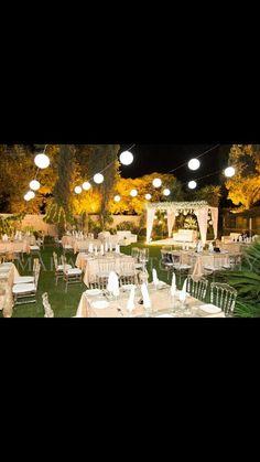 . Wedding Arrangements, Dolores Park, Travel, Viajes, Destinations, Traveling, Trips