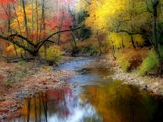 NatBG.com - Autumn Stream Colors Nice Abstract Trees Red Rivers Forests Yellow…