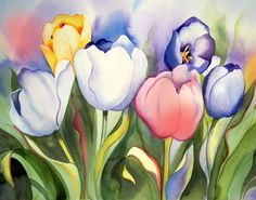 Amy Hautman - Tulip