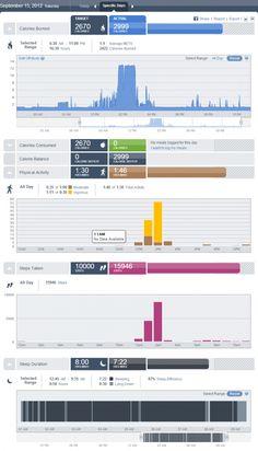 Fitness data dashboard by Bodymedia Fit