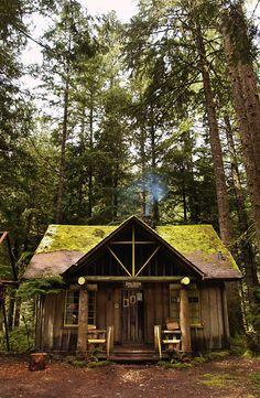 Steiner cabin, Oregon