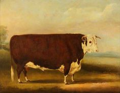 Hereford Bull: 'Walford', 1859, by William Henry Davis (c.1783-1865)