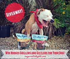 Delicious Barbecue Inspired Dog Treats from Nudges | Pawsitively Pets