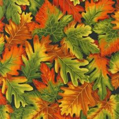 Robert Kaufman Shades of The Season Autumn Leaves