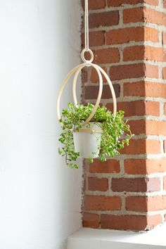 Learn how to make this simple and lightweight planter using a favorite craft supply. See more with our DIY Embroidery Hoop Hanging Planter project. Macrame Hanging Planter, Hanging Succulents, Macrame Plant Hangers, Hanging Planters, Indoor Planters, Wood Planters, Plants Indoor, House Plants Decor, Plant Decor