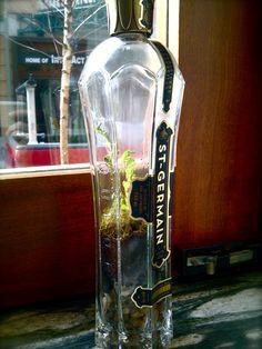 Empty St-Germain Bottle