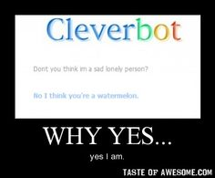 Thank you Cleverbot.:)