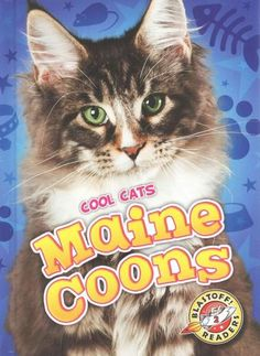 Relevant images match informative text in this introduction to maine coons. Intended for students in kindergarten through third grade--