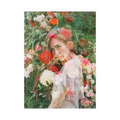 Jodi Miller Photography
