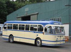 Express Coaches, Nice Bus, Bus Life, Bus Coach, Classic Motors, Motorhome, Glasgow, Vintage Cars, Burns