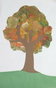 tree and forest unit of study for little ones