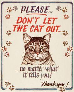 Hauser--Cat Out Cartel de chapa