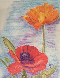 """""""Two Poppies"""" - a watercolour pencil painting by Wendy Sinclair 13.12.13"""