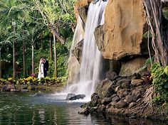 """Say """"I do..""""   in the heart of the nature at Westin Maui Resort & Spa."""